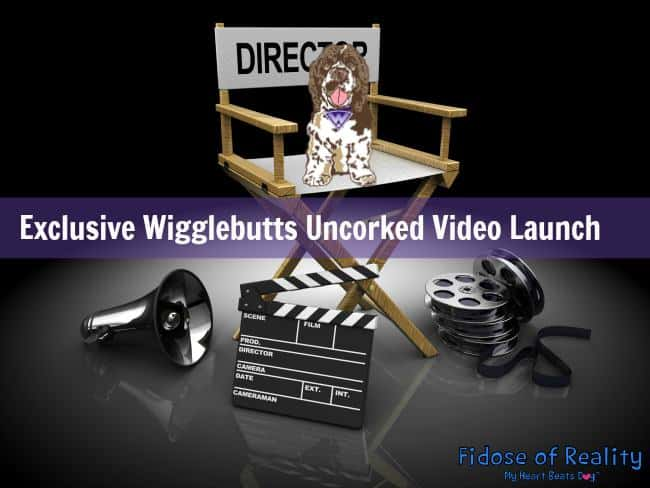 Wigglebutts Uncorked video