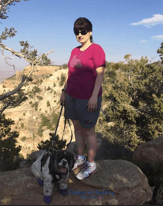 Dog boots at Grand Canyon