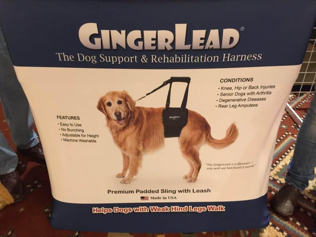 GingerLead for dogs