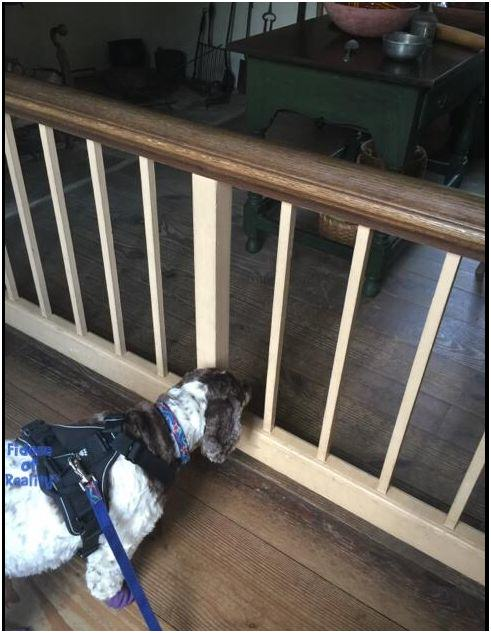 George Washington house