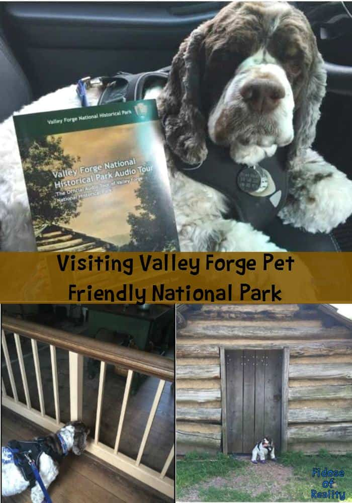 Pet friendly Valley Forge National Park