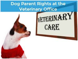 Dog Parent Rights at the Veterinary Office
