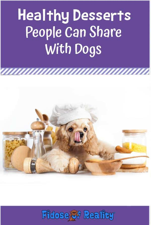 Healthy desserts your dog can eat