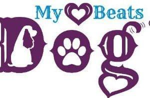In Celebration of Dog National Dog Day