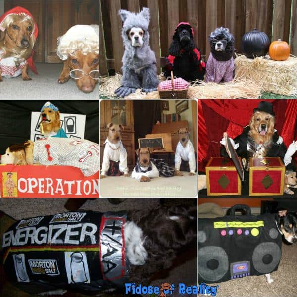 Clever dog halloween costumes