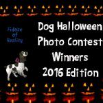 Dog Halloween Photo Contest Winners 2016