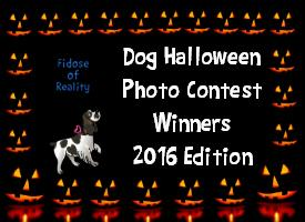 Dog Halloween Photo Contest Winners 2016