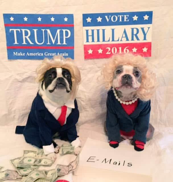 Hillary and Trump Halloween
