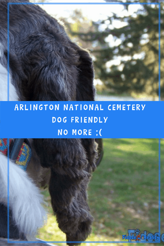 Arlington National Cemetery no pets