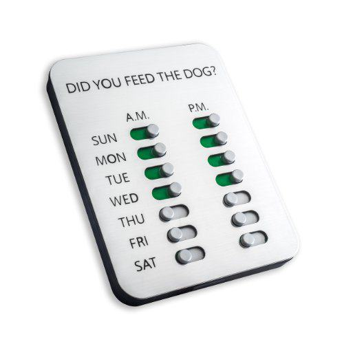 Did you feed the dog reminder