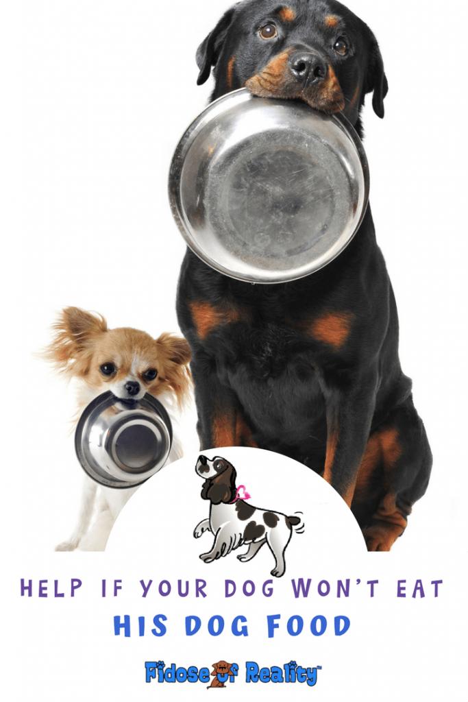 Help for dog food selection