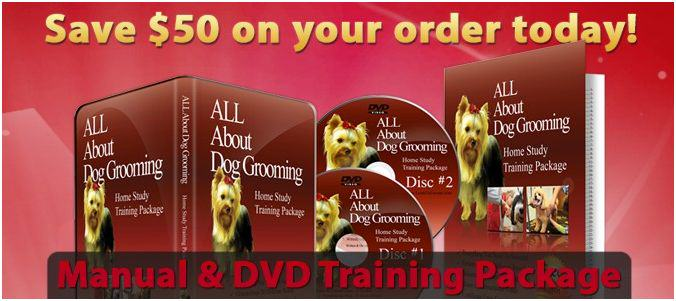 A Dog Grooming Training Course by Professional Groomers