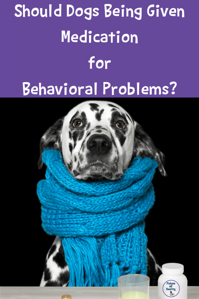 Should dogs take medications for behavioral problems