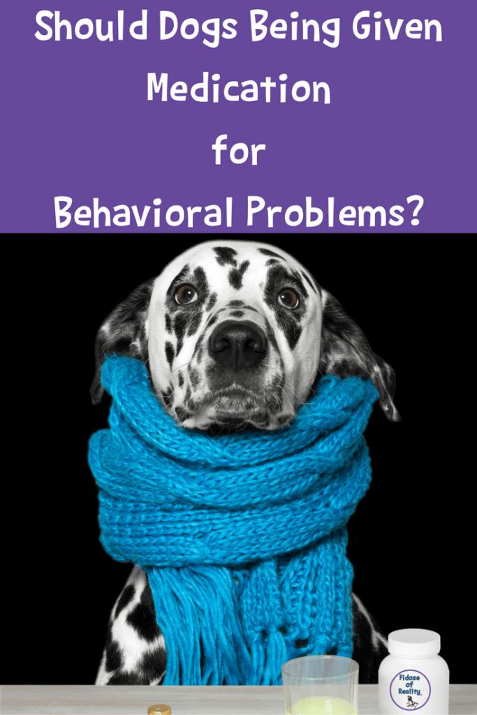 Should dogs take medications for behavioral problems