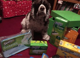 How to Groom Your Dog at Home #SwifferFanatic