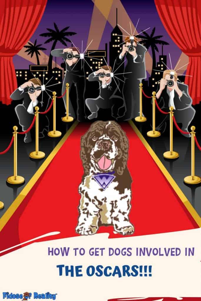 How to celebrate Oscars with dogs