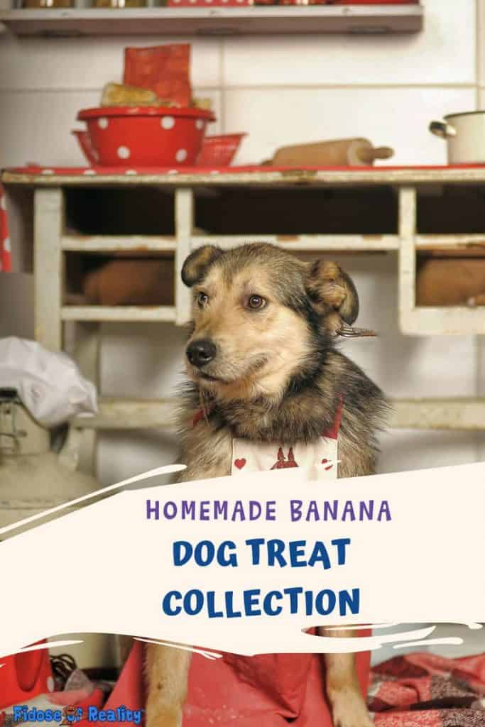 homemade dog treats with bananas