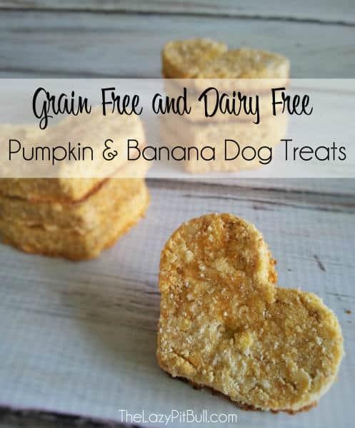 Pumpkin and banana dog treat