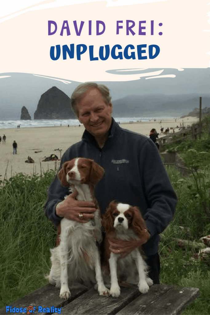 David Frei dog show interview