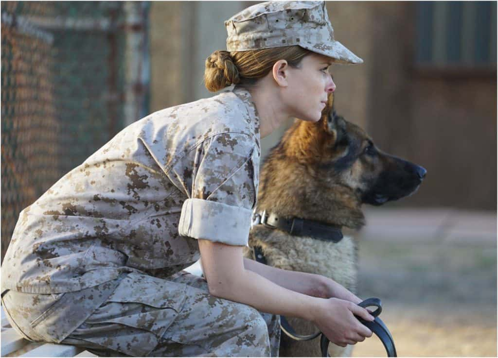 Megan Leavey hero dogs