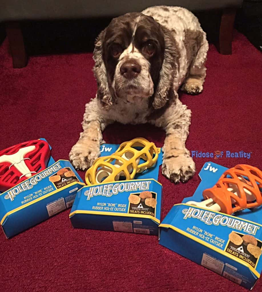 Holee Gourmet dog toys