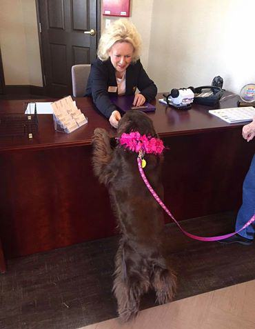 Therapy Dog Lucy does a meet and greet