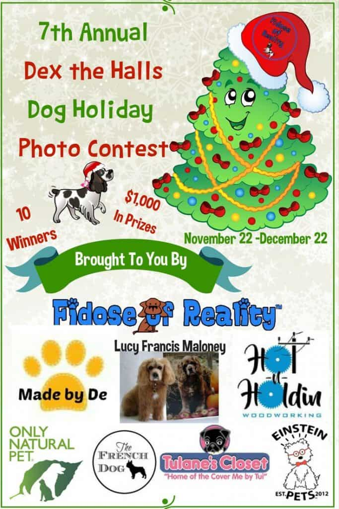 Dog Christmas Photo Contest