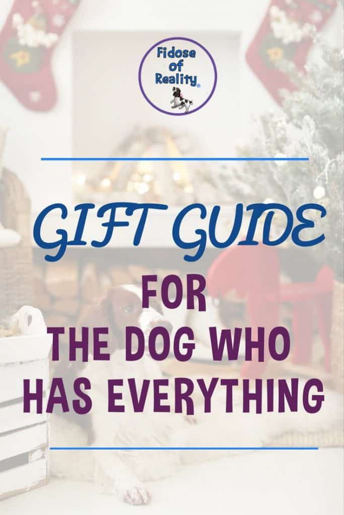 Gifts for the dog who has everything