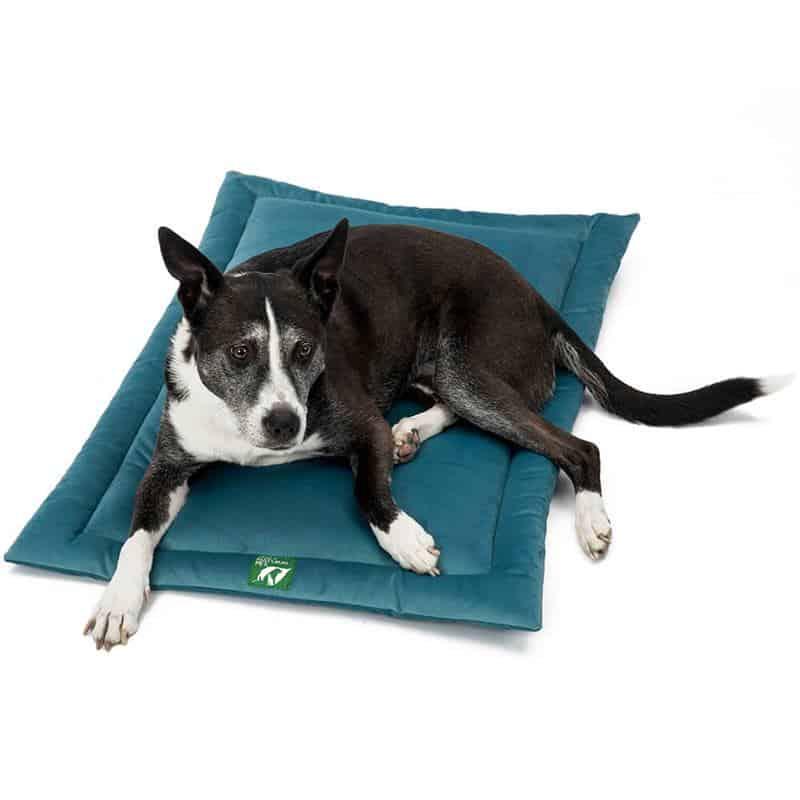 Comfy dog mat