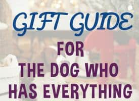 Gift Guide for the Dog Who Has Everything