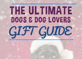 Ultimate Gift Guide for Dogs and Dog Lovers