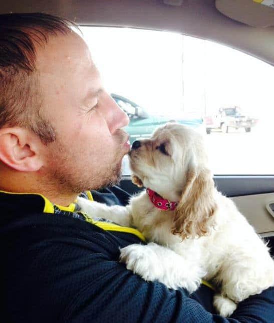 Dog valentine photo contest