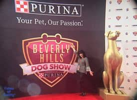 Exclusive Beverly Hills Dog Show Backstage Pass