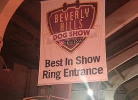 Exclusive Details Emerge: Beverly Hills Dog Show Group Winners #BHDOGSHOW