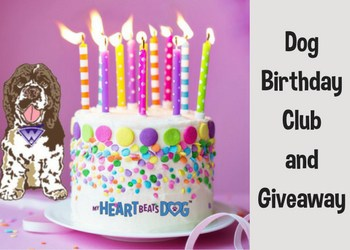 Enter OurDog Birthday Cluband Giveaway
