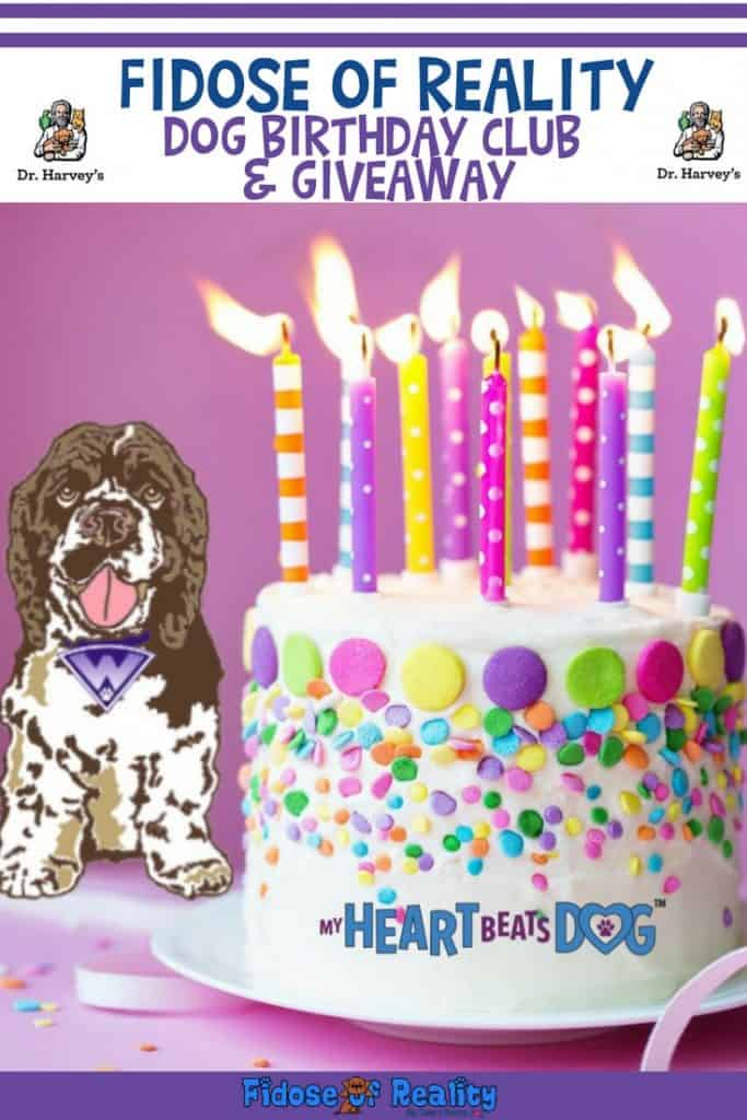 Dog Birthday club and giveaway