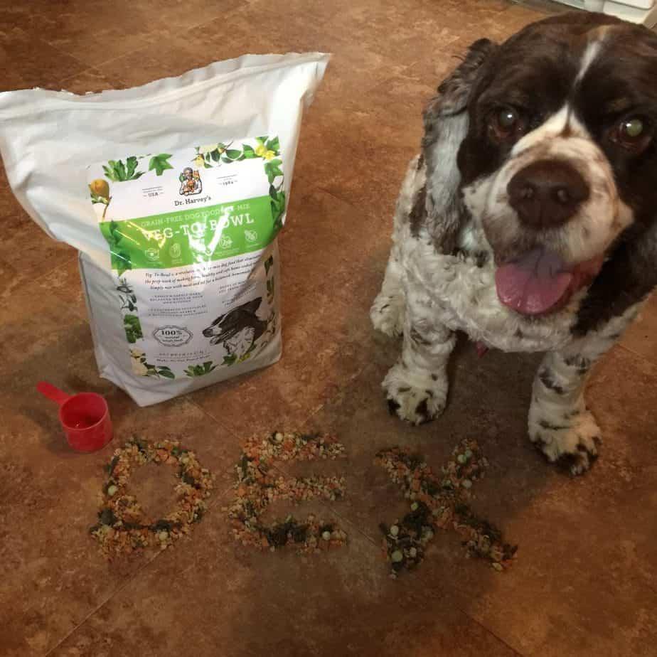 Dog with Dr Harveys food
