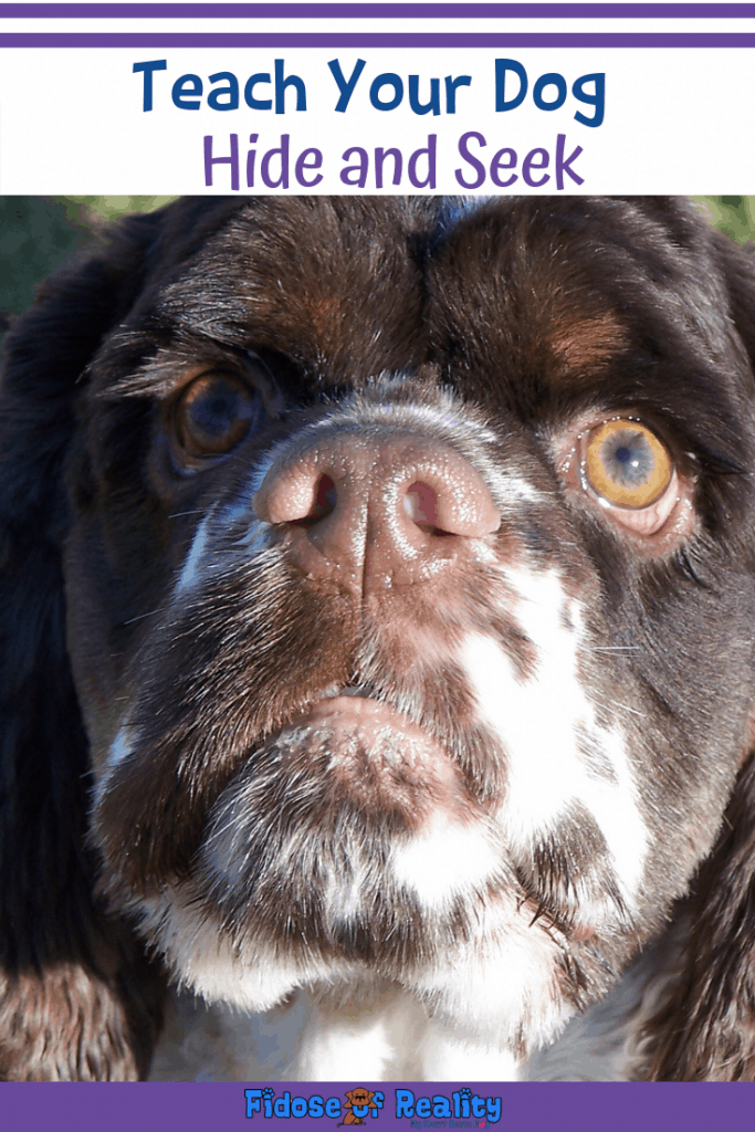 Hide and seek trick
