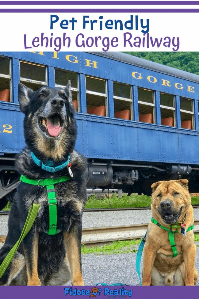 Lehigh Gorge Railway Pet Friendly
