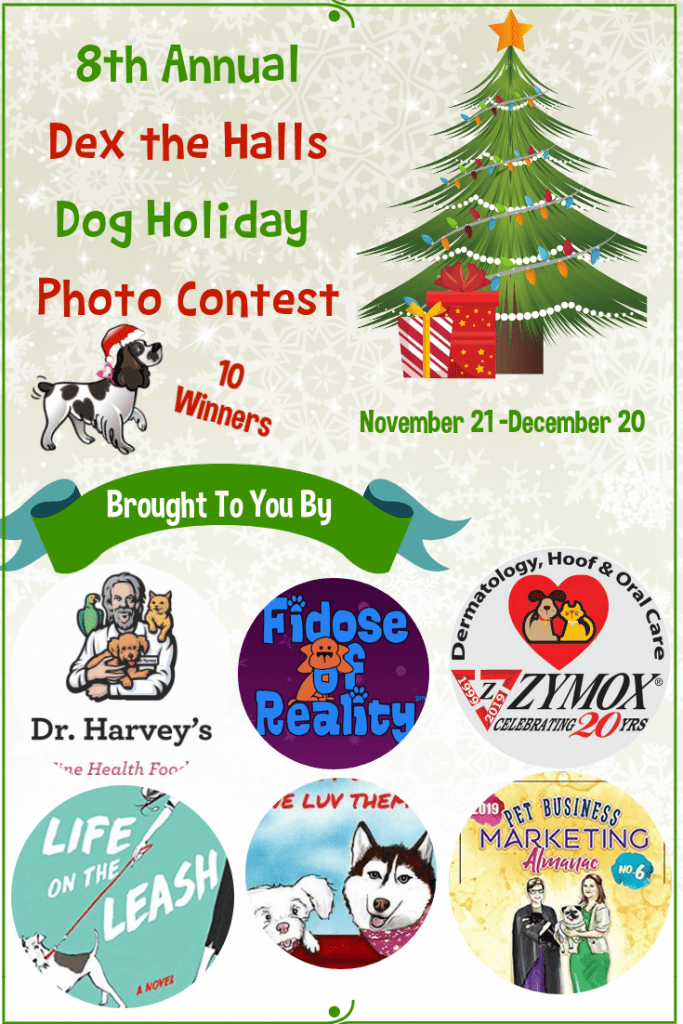 Dog lover contest