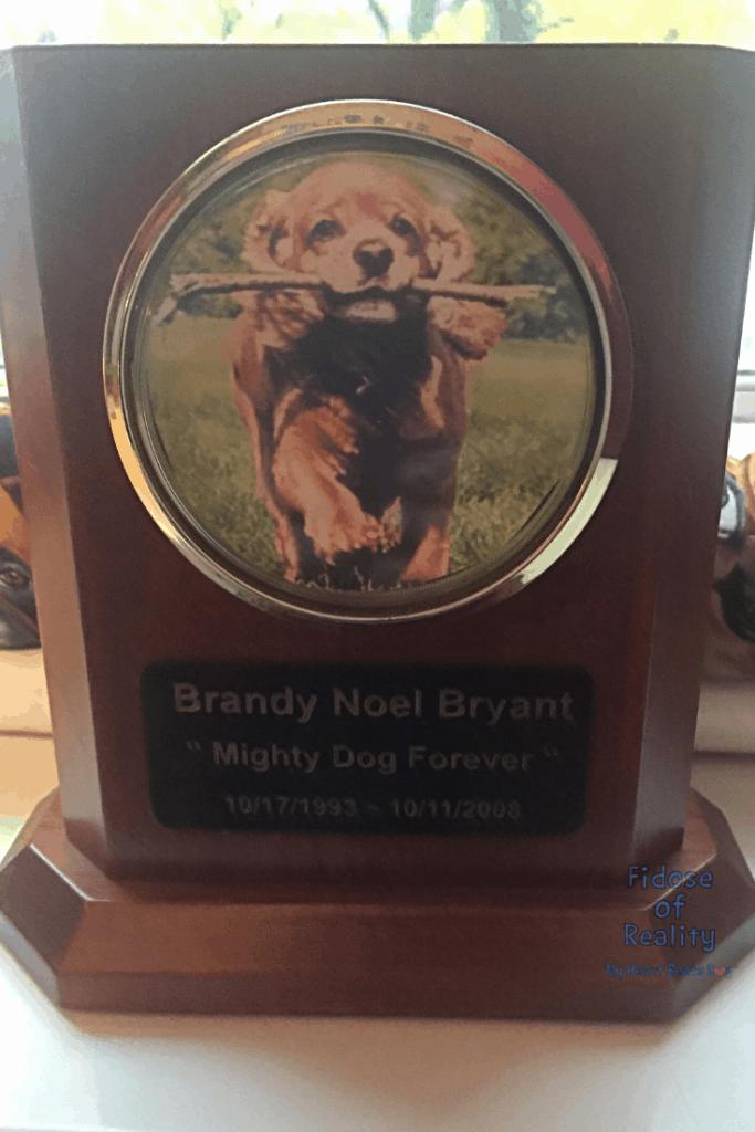 Brandy Noel urn