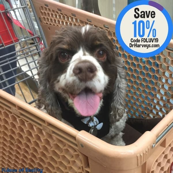 save on homemade dog food