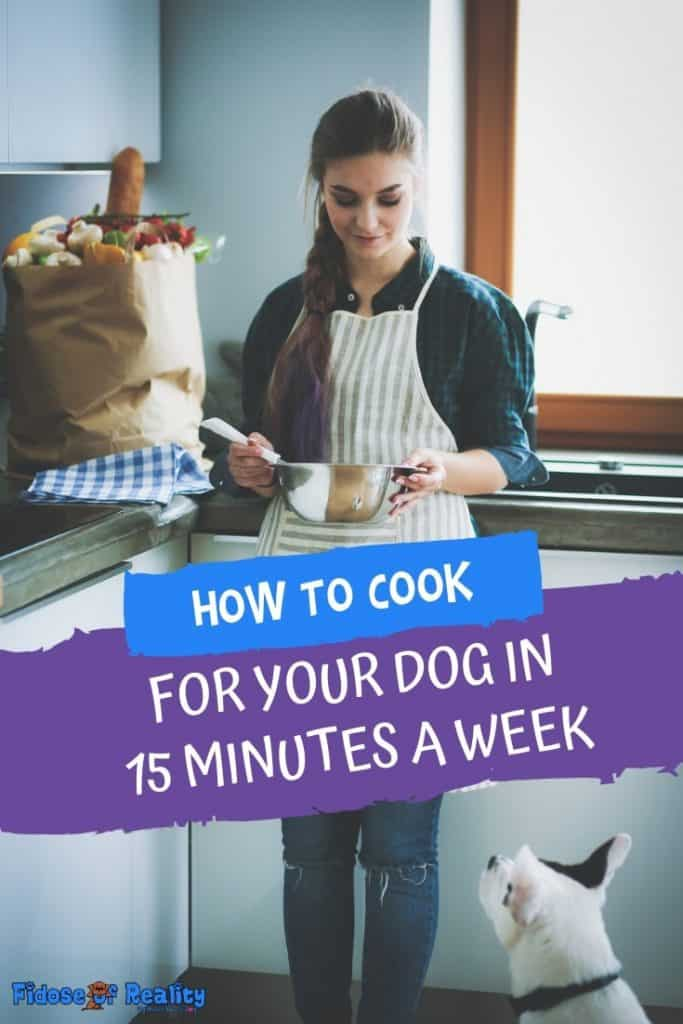 Woman cooking homemade food for her dog