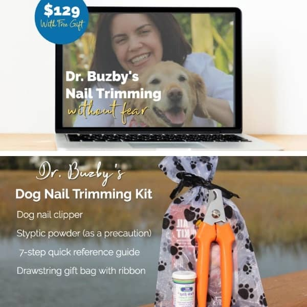dog nail care system