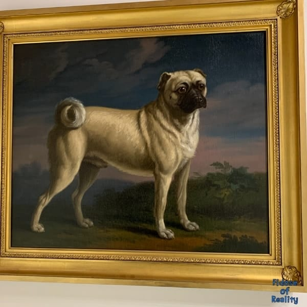 pug painting at dog museum