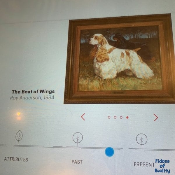 dog museum interactive display