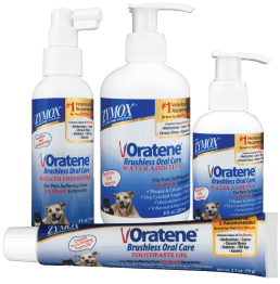 brushless dental care for dogs