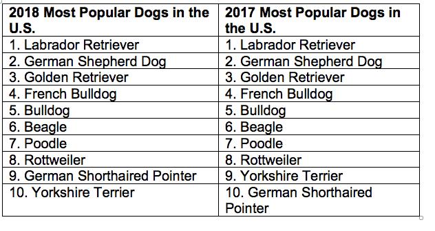 most popular dog breeds listing