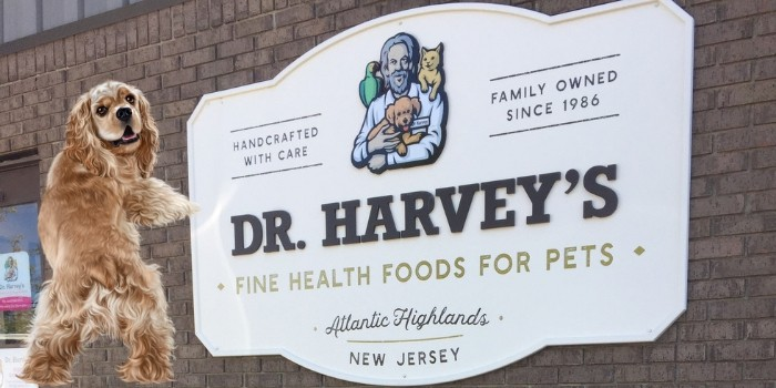 Healthy Dog Contest To Win A Monthly Box From Dr. Harvey's