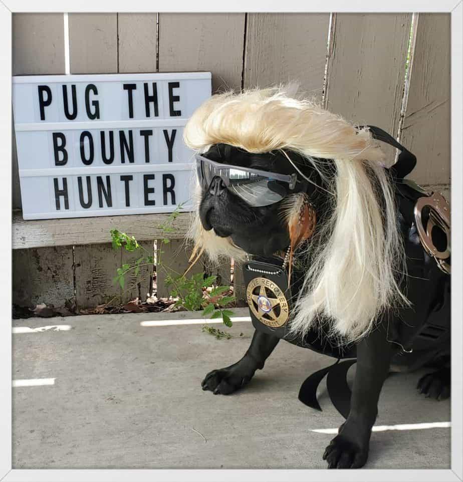 Pug the bounty hunter costume